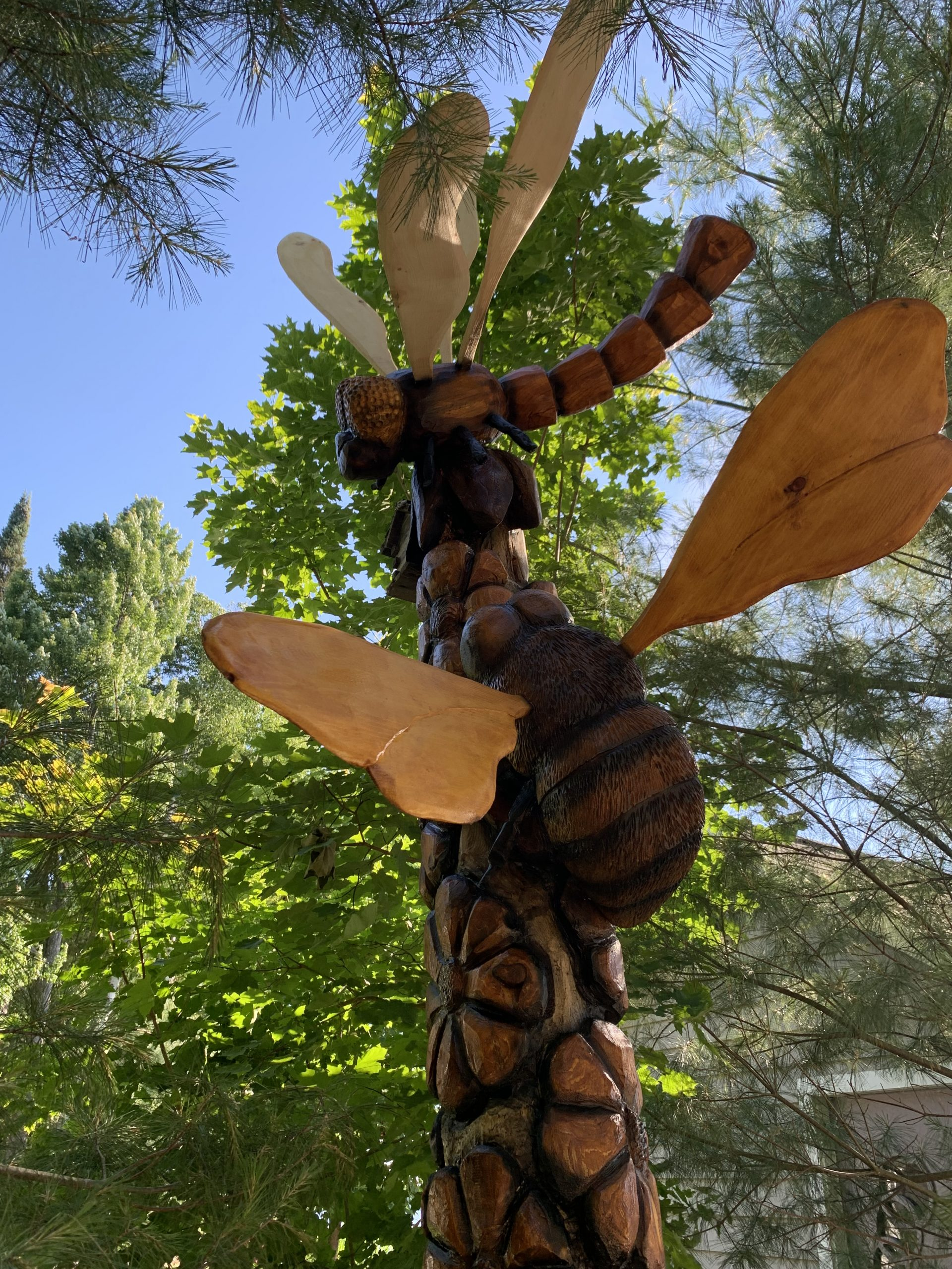 """Featured image for """"XXL Bee & Dragonfly"""""""